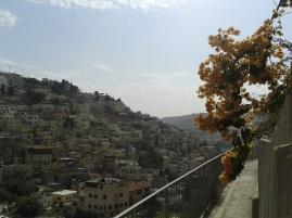 Spacer wzdłuż ścian Miasta Dawida