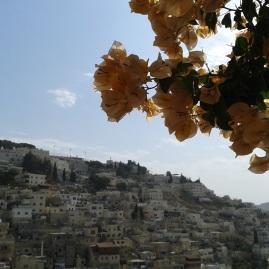 Dzielnica Silwan, Wschodnia Jerozolima, widok z Miasta Dawida