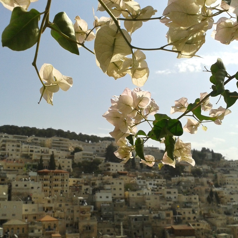 Silwan. View from Ir David