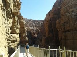 Wadi Mujib 1