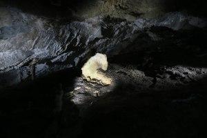 Jaskinia Belianska, grzybek