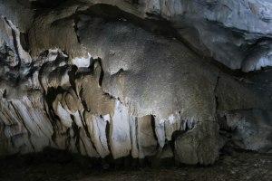 Jaskinia Beliańska, zęby rekina