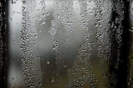 Kazimierz deszczowy